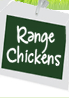 Range Chickens at Malvitz Bay Farms